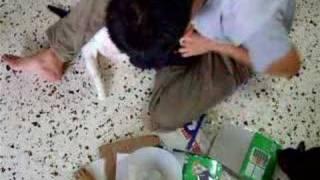 Cripple Kitten - updates 18September2007