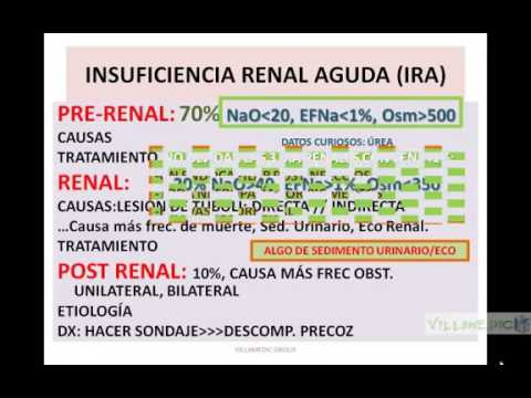 VIRTUAL NEFROLOGÍA INSUFICIENCIA RENAL AGUDA