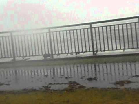 Hurricane irene in new bedford ma