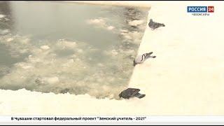 В Чебоксарах приступили к обустройству крещенских купелей
