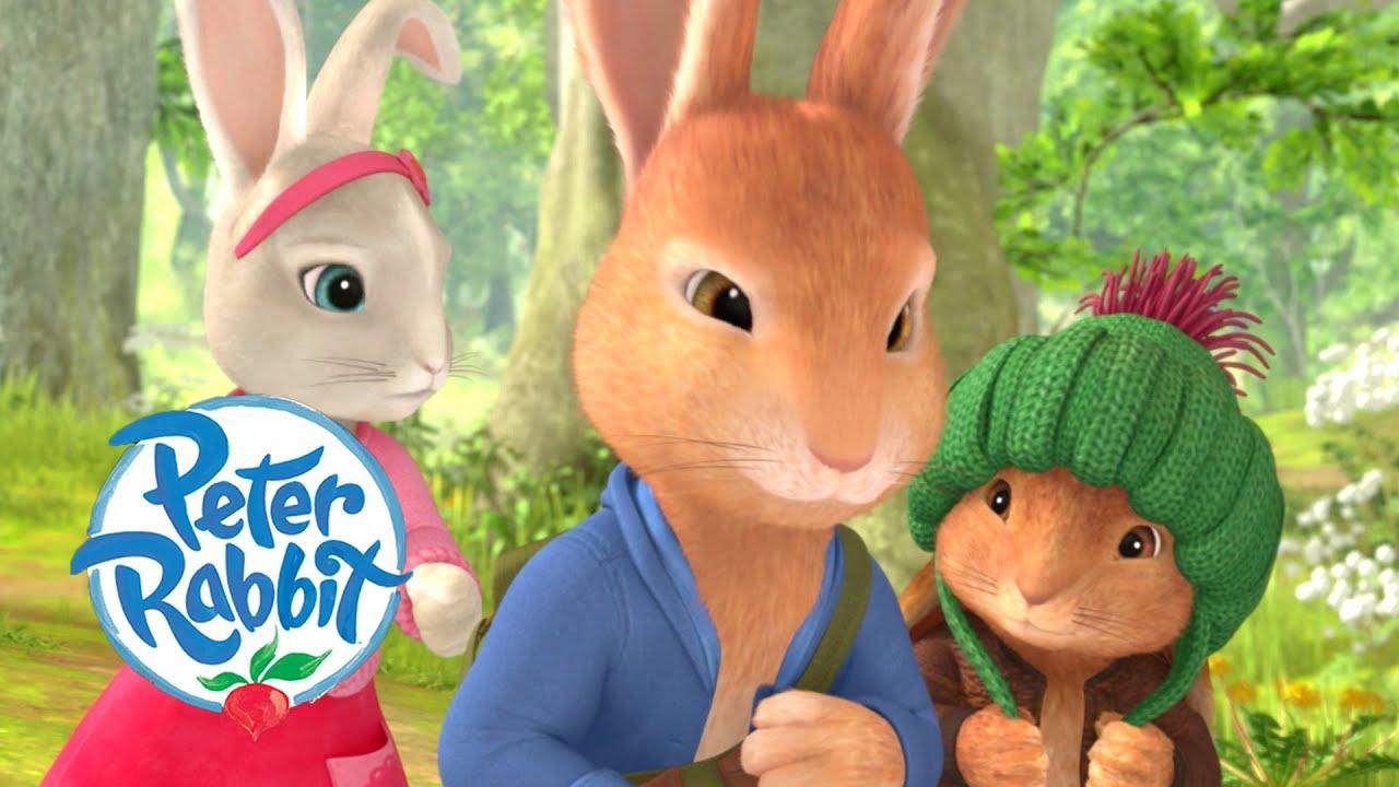 Download Peter Rabbit - Tales of the Three Mischievous Rabbits   1 hour+ of Adventures!   Cartoons for Kids