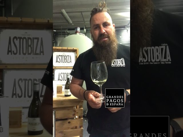 Mi vino para este verano con Bittor Villanueva y Malkoa de Astobiza