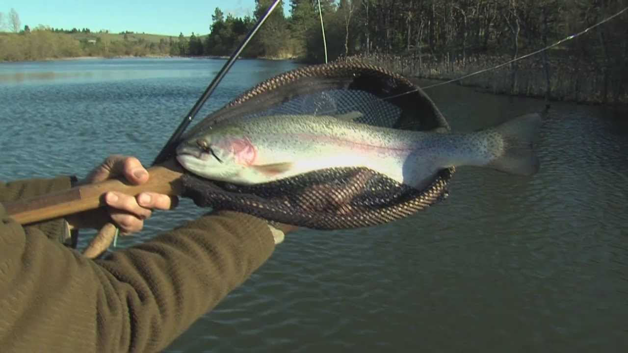 Oregon fishing club private waters near portland youtube for Oregon free fishing