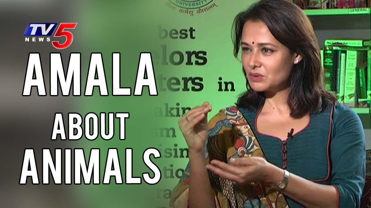 Download Akkineni Amala about Animals   Amala Akkineni Interview   TV5 News