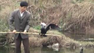 Çin Guilin Bölgesinde Balık Tutma...2004 yılı Çin Görevi... Fishing in Guilin China...