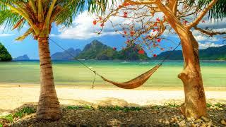 Картинка лето. Берег, лодки, гамак, пляж, пальмы, горизонт, романтично, острова