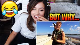 "Pokimane Reacts To ""Tfue Does Fortnite In Real Life"" - Fortnite Funny Moments"