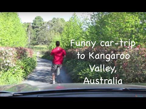 Road Trip to Kangaroo Valley, South New Wales, Australia