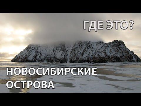 Где находятся Новосибирские