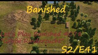 Banished #078 Große Rinderzucht [S2E41][Let´s Play Banished]