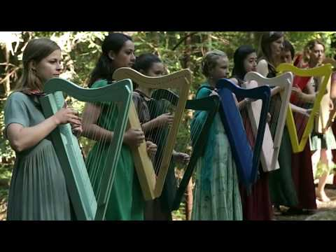 Young Musician Activists play Harps to Save the Redwoods