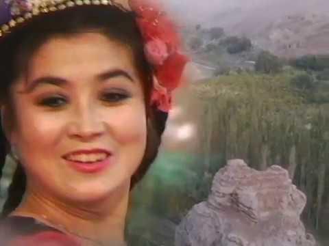 The Uighurs