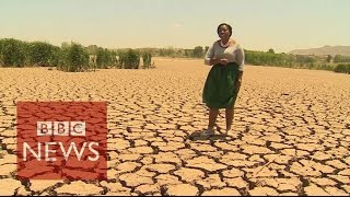 Worst drought in 30 years hits Sout Africa  - BBC News