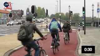 Traffic lights in 's-Hertogenbosch (NL)