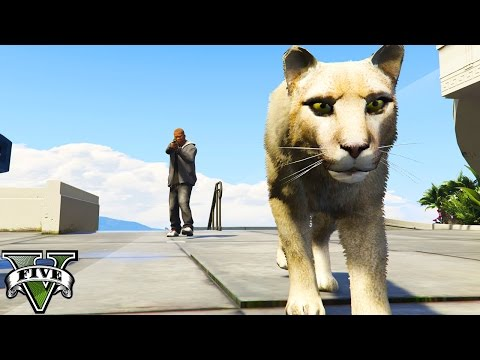 GTA 5 MODS - WILDLIFE RESCUE! SAVE ALL THE ANIMALS! (GTA 5 Mods)