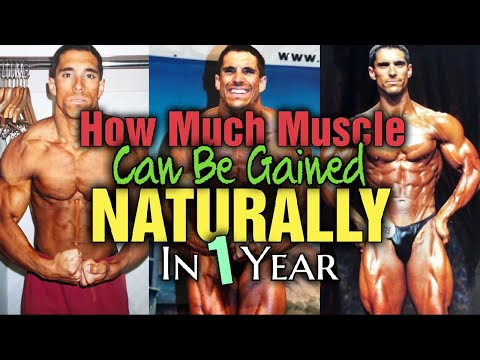 How Much Muscle Can You Gain Training Natural Per Year???