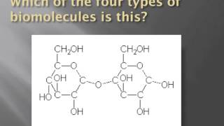 How to identify biomolecules structurally