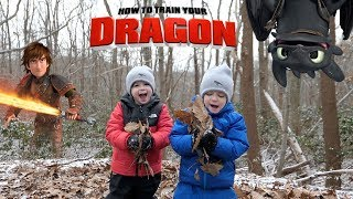 How to Train Your Dragon 3: The Hidden World Rescue Toothless Part 2 with Chase and Cole Adventures