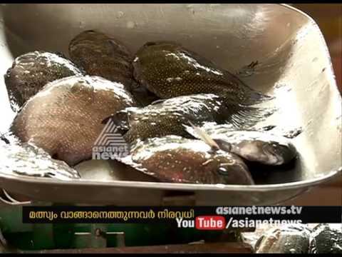 Vellayani Lake receives fresh fish stock