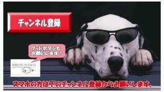 2017/9/15. 飛龍つかさ Bow Singing Workshop お稽古 2016年8月7日 プチ...