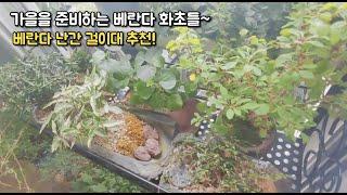 가을을 준비하는 베란다정원 화초들~ 베란다 난간 걸이대…