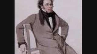 F.SCHUBERT ave maria (instrumental)