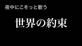 鶫真衣 - 世界の約束