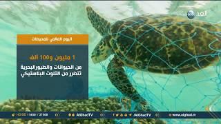 تقرير| في اليوم العالمي للمحيطات.. الأمم المتحدة تحذر من أن النفايات البلاستيكية تهدد الحياة البحرية