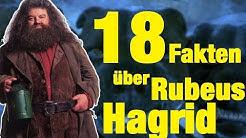 18 FAKTEN über Rubeus HAGRID