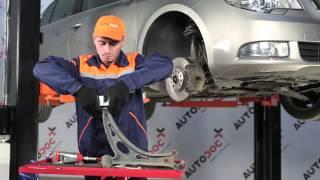 Kuinka vaihtaa tukivarren pusla SKODA SUPERB 2 -merkkiseen autoon OHJEVIDEO | AUTODOC