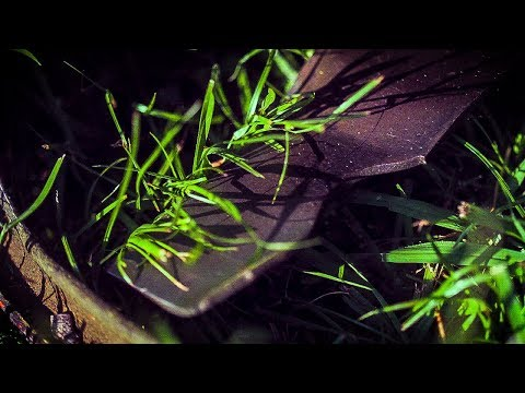 How Lawn Mower Blades Cut Grass (at 50,000 FRAMES PER SECOND) - Smarter Every Day 196