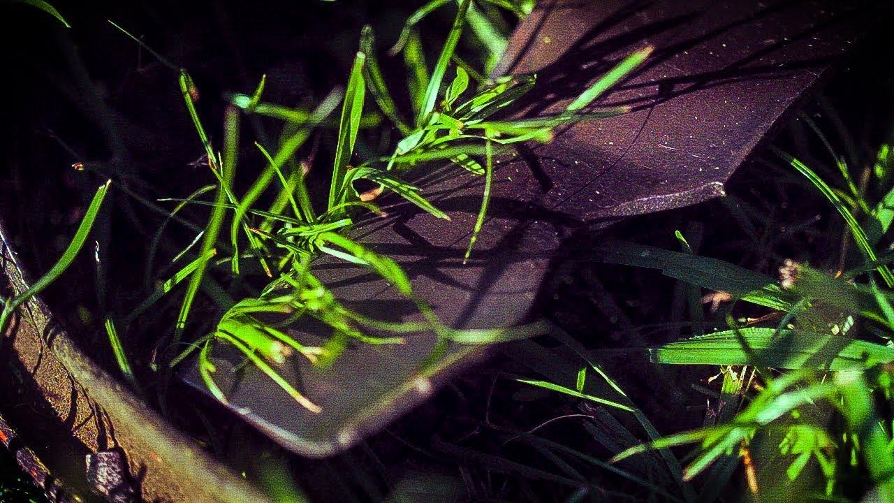 How Lawn Mower Blades Cut Grass (at 50,000 FRAMES PER SECOND)