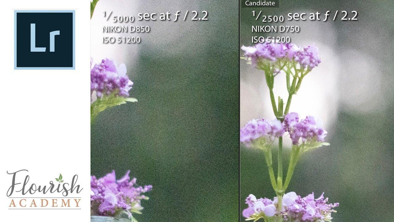 Nikon D750 vs D850 ISO Comparison Test & Review