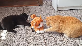 Pranking My Cats With A Fake Cat