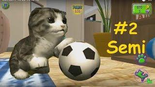 Семи Бегает по Дому и Выполняет Кошачьи Задания под Милую Детскую Песенку про Жизнь Котика