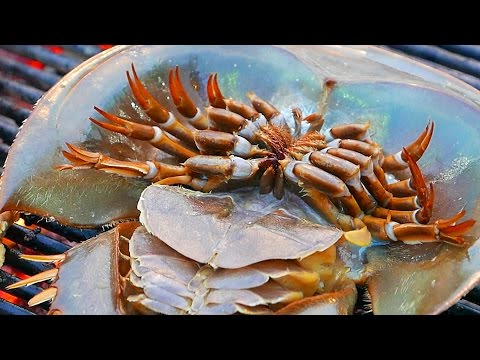 Thumbnail: Thailand Street Food - HORSESHOE CRAB EGGS