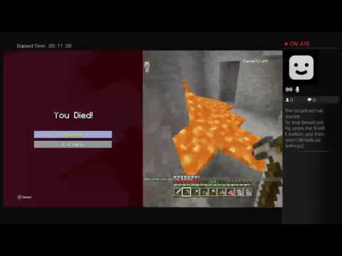 Gamercraft's Live footage on multy player\ second screen