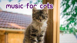 Cat Sleep Music - Kitten Lullabies for Feline Relaxation