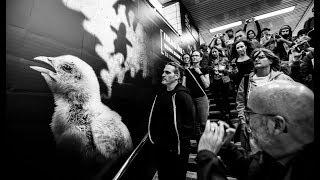 Joaquin Phoenix Shows His Support of BeFairBeVegan!