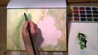 Гроздь винограда акварелью. Часть 1
