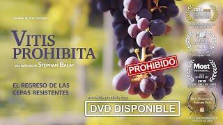 VITIS PROHIBITA  - TRAILER  ES