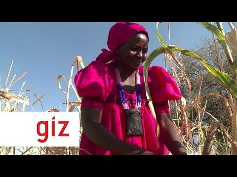 Comprehensive Conservation Agriculture Programme Namibia. 2019 | GIZ