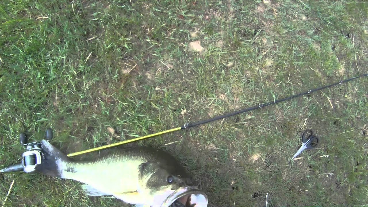 Largemouth bass fishing 5lb bass in spring youtube for Local bass fishing clubs