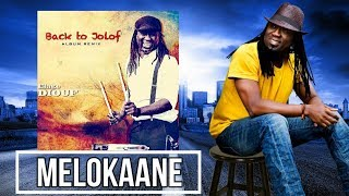 "Nouvel album Elage DIOUF ""BACK TO JOLOF"" - MELOKAANE"