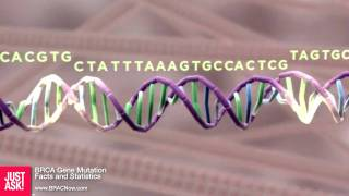 BRCA Gene Mutation Facts and Statistics
