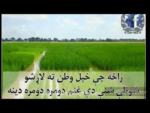 Best Pashto Gharani paktia song - HD 3