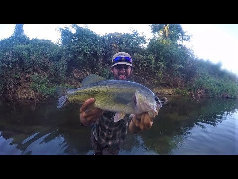 Bass Fishing A TINY Ditch!!!