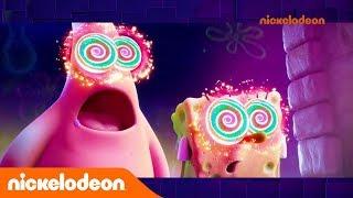 L'actualité Fresh | Semaine du 09 au 15 décembre 2019 | Nickelodeon France