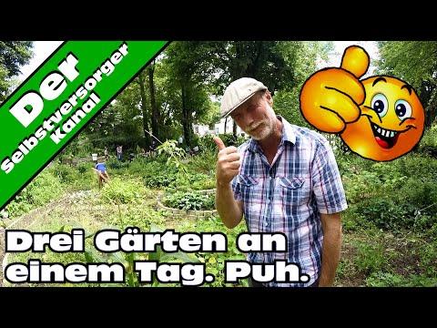 Drei Gärten in einem Video. Urban Gardening in Essen.