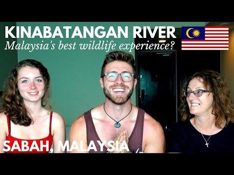 KINABATANGAN RIVER TOUR, SABAH: IS IT WORTH IT? TRAVEL MALAYSIA